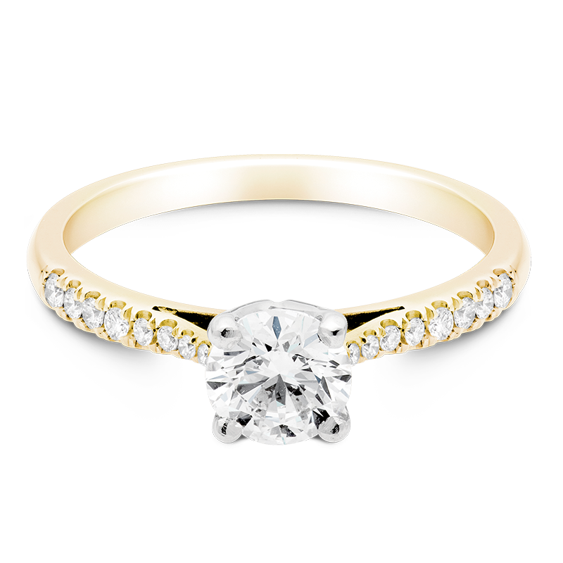 Round Brilliant Set with Diamonds, 18ct Yellow Gold